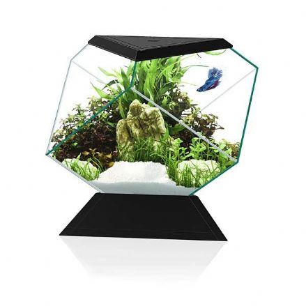 Ciano Nexus Betta Aquarium with Colour Changing LED Light BLACK